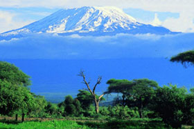 kilimanjaro4.jpg